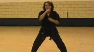 Short 1, Long 1 & Short 2 - American kenpo
