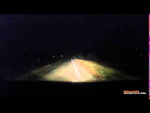 Огайо, забавный заяц бежит под колеса