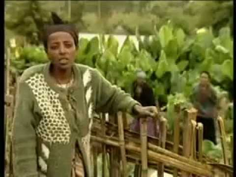 Vegetable Farming in Southern Ethiopia