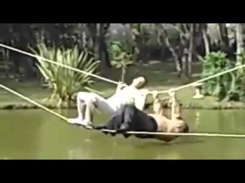 TOO FUNNY not to share  EPIC FAIL while crossing a river