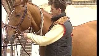 Galops 1 et 2 : Programme pour les cavaliers débutants - Equitation