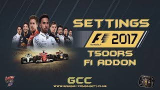 F1 2017 🏁 T500RS F1 Addon 🎮 Einstellungen 🔧 In-Game Settings 💻 Thrustmaster Profil 👀