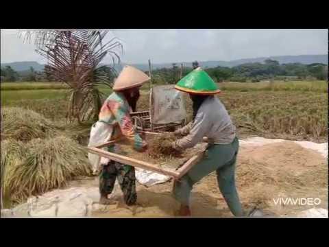 travelling-wong-jogja-#3-desa-wisata-kebonagung