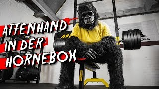 Home Gym Training: Affenhand ballert  in der Hornebox