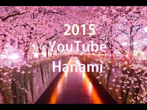 Osaka Hanami 2015