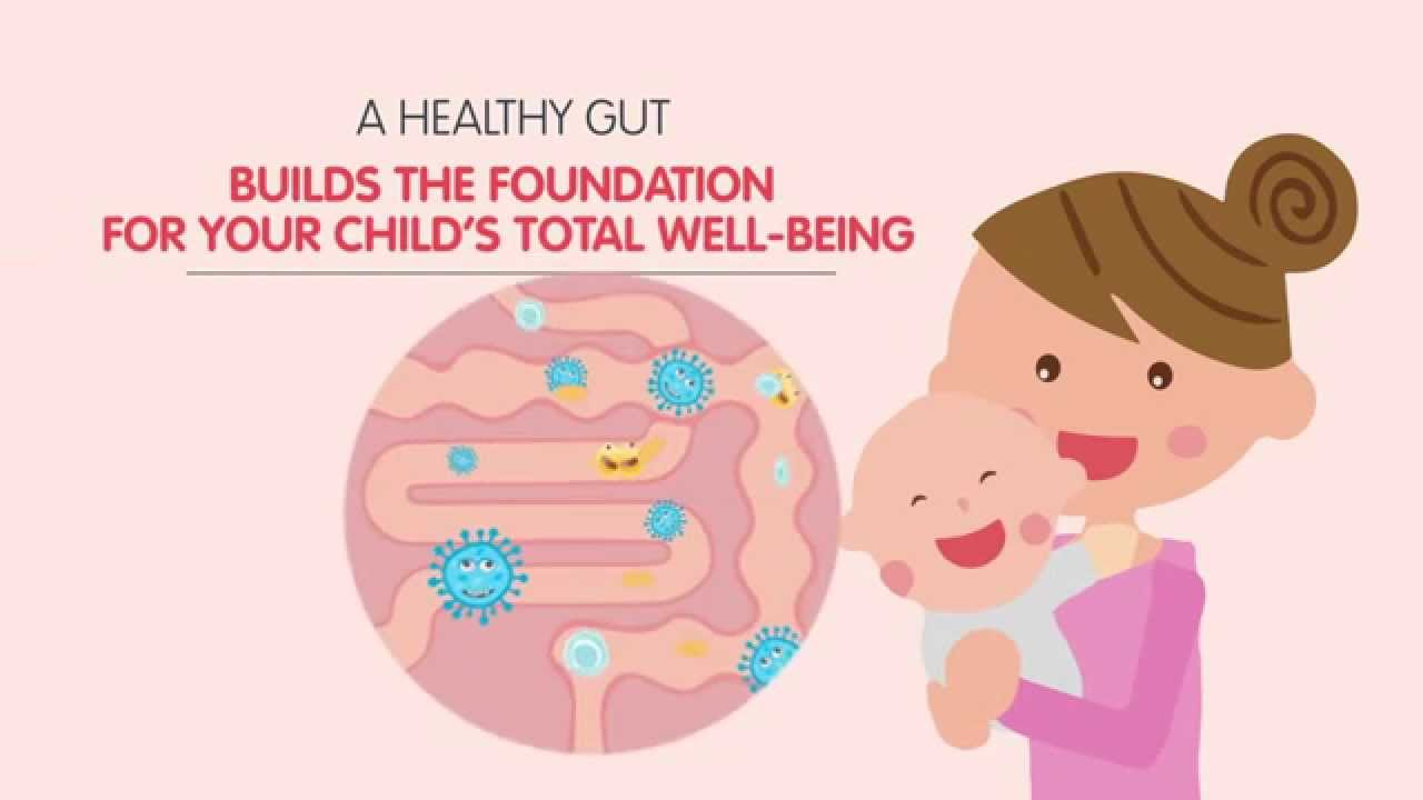 Gut Health Did You Know