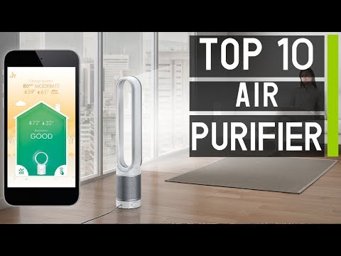 Top 10 Best Air Purifiers For Your Home