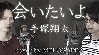 【男2人ハモリ】手塚翔太(田中圭)「会いたいよ」ドラマ「あなたの番です-反撃編-」主題歌(cover by MELOGAPPA) フル歌詞付き