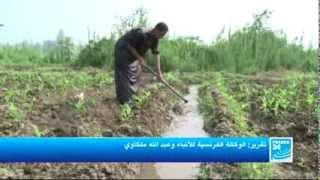 ريبورتاج| شح مياه نهر النيل يهدد مصر