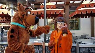 Velma&Scooby Dooはユニバーサル・スタジオ・ハリウッドのScrappy Dooでマッド!null