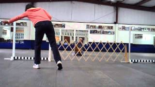 Introduction To Directed Jumping: Puppy Training With Ethan