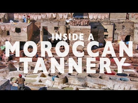Tannery Tour in Fez, Morocco | Top Attractions Travel Fez