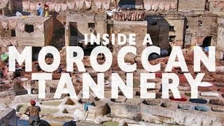 Gambar cover Tannery Tour in Fez, Morocco | Top Attractions Travel Fez