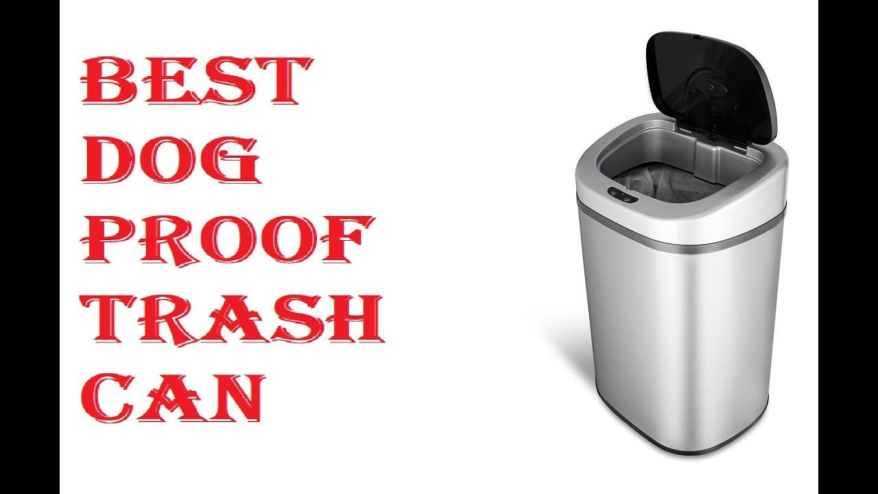 Best Dog Proof Trash Can 2018 Youtube