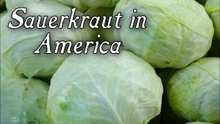 Sauerkraut In Early America - Q&a