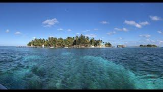An Un-Belizable Honeymoon | Belize City, Caye Caulker, Tobacco Caye, Dangriga, Belize Barrier Reef