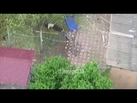Спецоперация в Назрани 7 июня 2018