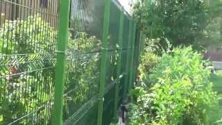 Забор из сварных секций на винтовых сваях(, 2015-11-29T19:56:40.000Z)
