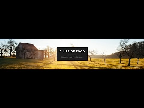 A Life Of Food - 003 - Interview Jingles Part 1