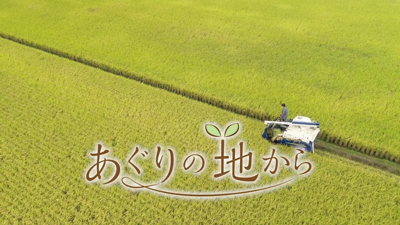農の美しさ伝える番組「あぐりの地から」スタート