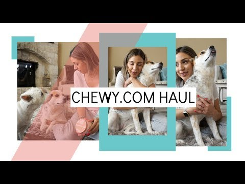 chewy-haul-|-stuff-for-senior-dogs,-anxious-dogs,-and-restricted-diet-dogs!-all-the-dogs!