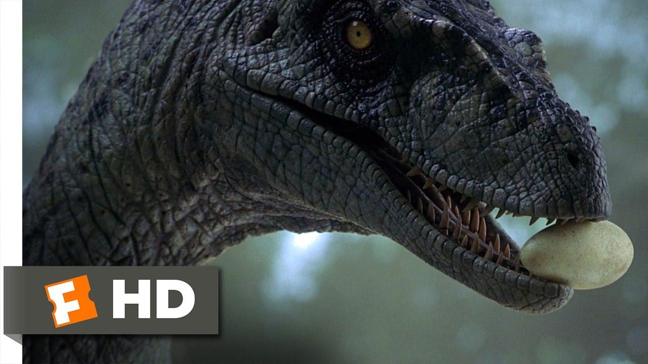 dae2db59c808 Jurassic Park 3 (10 10) Movie CLIP - Returning the Raptor Eggs (2001) HD -  YouTube