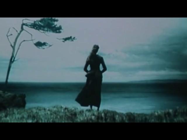 LIL $COTTY - XANS MV