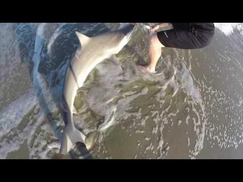 Shark Fishing The Beach