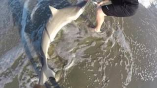 Shark Fishing The Beach(Every year about this time the sharks run the beaches up and down the east coast. For the shore-based angler there is no larger fish to conquer than a Shark, ..., 2016-07-05T16:16:41.000Z)