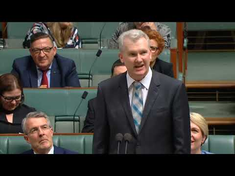 Look at what they have become - TONY BURKE