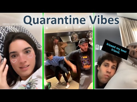 Vlogsquad Instagram Stories To Watch During Quarantine !! | Vlogsquad Instagram Stories
