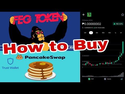 How To Buy FEG Token