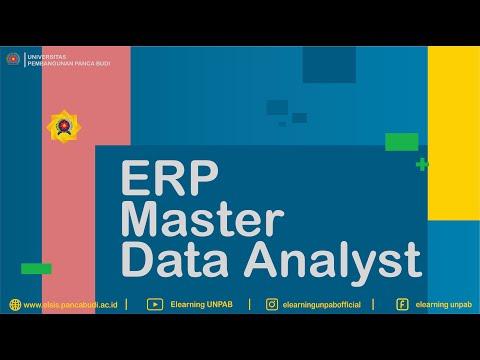 erp-master-data-analyst