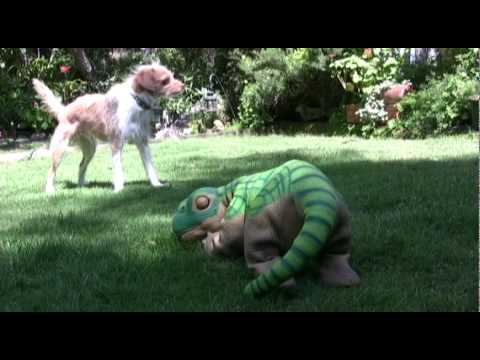 dogs versus dinosaur- thumbs down....