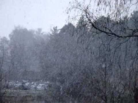 Фильм о сильном снеге в Монино 25 апреля 2010 в 20-15 мск..wmv