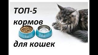 ТОП-5 продаваемых кормов для кошек