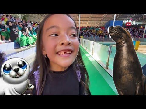 Sealion Show | Zara Cute nonton Pertunjukkan Singa Laut | Ocean Dream Samudra Part 4 | Wisata Anak