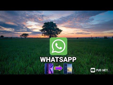 Cara Memindahkan WhatsApp Ke Hp Baru Tanpa Kehilangan Nomor dan Chattingan.