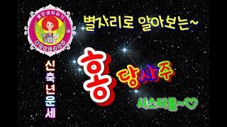 [홍당사주] 별자리로 알아보는 신축년 띠별 운세~