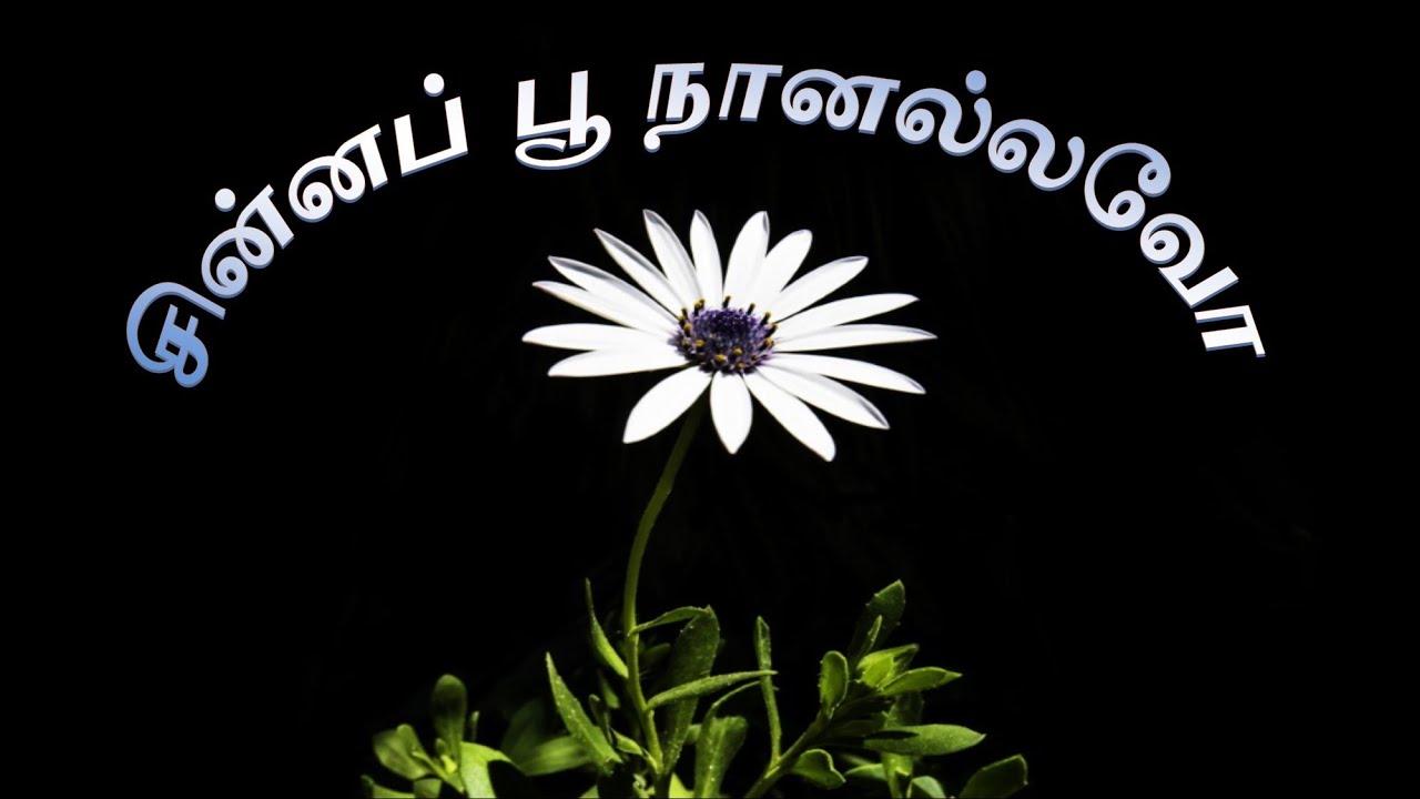 சின்னப் பூ நானல்லவோ – Chinna Poo Naannallavo