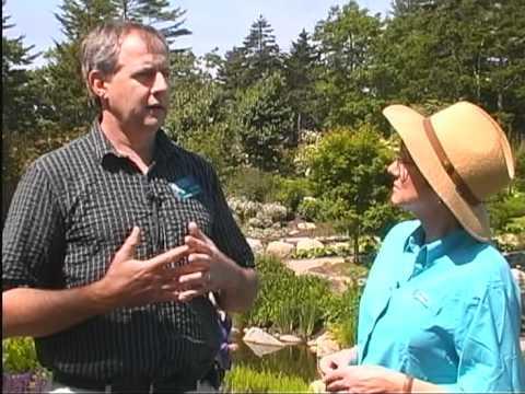 Coastal Maine Botanical Gardens: Preserving Maine's Botanical Heritage