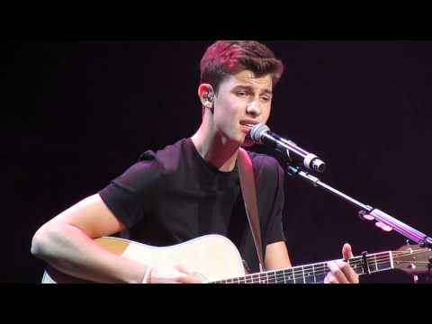 say something cover - shawn mendes