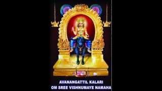 Sahasranamam-Vishnumaya...............(Avanangattilkalari) VISHNUMAYA