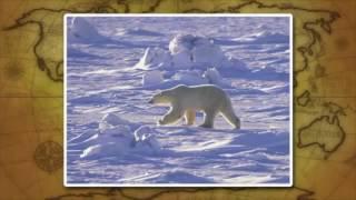 Урок географии 7 класс. Северный Ледовитый океан.