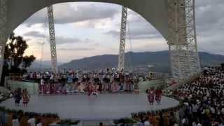 Guelaguetza 2013 - Tuxtepec: Flor de Piña