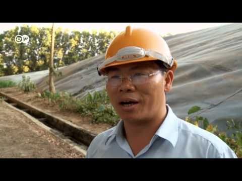 Turning trash into biogas in Vietnam | Global Ideas