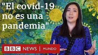 Qué es una sindemia y por qué hay científicos que proponen llamar así a la crisis del coronavirus