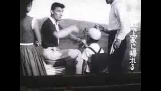 1958製作映画 赤線地帯 谷口千吉 シルバーピジョン大型