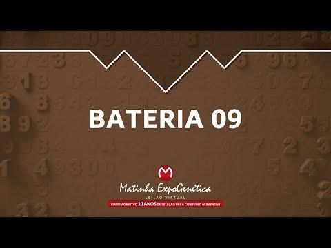 BATERIA 09 MATINHA EXPOGENÉTICA 2021