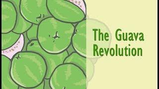 The Guava Revolution